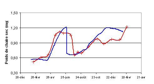 Exemple de simulation de la croissance (en bleu) comparé aux données (en rouge) grâce au modèle DEB