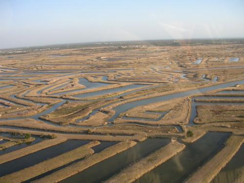 Marais de Boyardville vus du ciel, un exemple de construction de claires dans l'île d'Oléron.