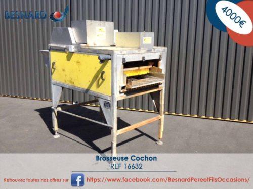 1-Brosseuse Cochon-16632