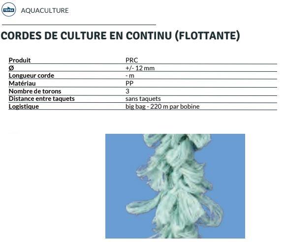 culture-moules-en-continu