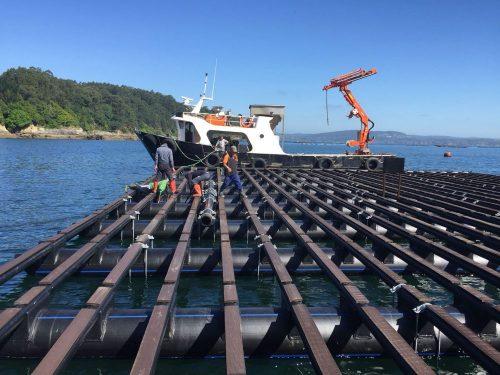 Structure flottante pour la culture des moules