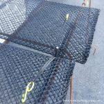 elastic protect - 3