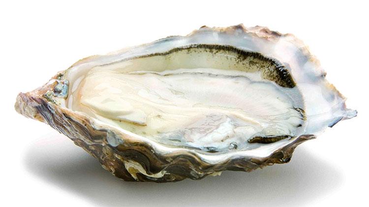 huitres-creuses-du-golfe-du-morbihan-n3-triploides-bourriche-de-12